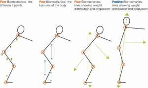 biomechanics_stick_figures_