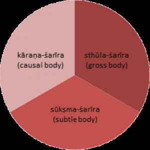 sarira1