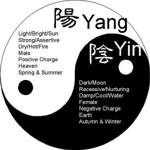 yinyang2