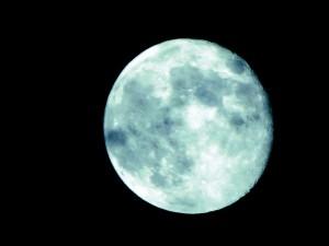 blue-55584_640