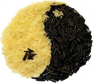 rice-74314_640