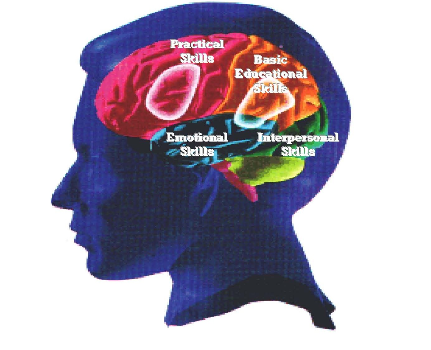 an analysis of multiple intelligence in human beings Version for speakers of other languages learning english) to analyze the  relation between  the concept of intelligence being multifaceted was defended  by  hand, gardner's research showing the plurality of human cognitive ability  and.